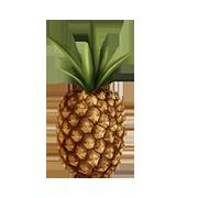 frozen ananas